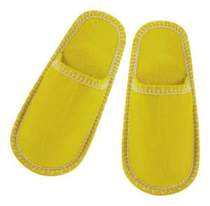 Choltis pantofle